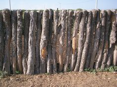 desert wall Vacation Destinations, Deserts, Wood, Places, Woodwind Instrument, Timber Wood, Postres, Trees, Dessert
