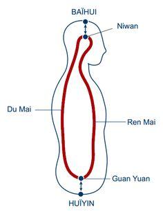 Ren Mai y Du Mai son otros dos meridianos extraordinarios que también se originan en Riñón y fluyen bajando por el perineo. Ren Mai asciende por el abdomen a lo largo de la línea media y Du Mai asc…