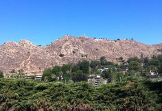 Mount Rubidoux, Riverside,CA - California Travel Blog - California | Vacation Ideas | Places to See | Things to Do | Cities | Beaches | Deserts | Wildflowers
