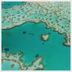 We are flying over the Great Barrier Reef! I can't describe how beautiful it is!  Have you spotted the heart?  Wish you all tons of love! #best#place#on#earth #heart#reef#australia #qld #greatbarrierreef #whitsundays #australien #love #urlaub #ferien #fliegen #kurztrip #expat#blog #unterwegs #wanderlust #ocean #beach #happy #adventure by kajascorner http://ift.tt/1UokkV2