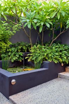 Lovely-Koi-Pond-decorating-ideas-for-Stunning-Landscape-Tropical-design-ideas-with-australian-garden-courtyard-decking-garden-courtyard-lush-modern-modern-garden-pond-rhododendron « Lovely Home designs
