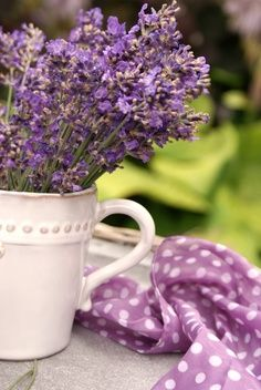 What to do all that whatever it is....like the lavender that grows so well in our yard mostly because it is ignored ....