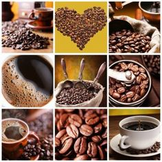 14879211-collection-of-coffee-nine-images-of-different-types-of-coffee-and-accessories.jpg (1200×1200)