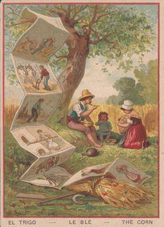 Il grano, 1885-95; pubblicità estratto di carne Vin Aroud, Parigi; dalla serie di 30 figurine 'Lavorazione di prodotti diversi'
