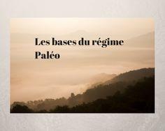 Les bases du régime Paléo