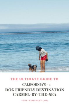 Trying to escape the July 4 fireworks with your dog? Look no further tahn Carmel by the Sea, California, USA, the number one dog friendly town in the state. Here is the complete and only guide to the town for you to have a good time.