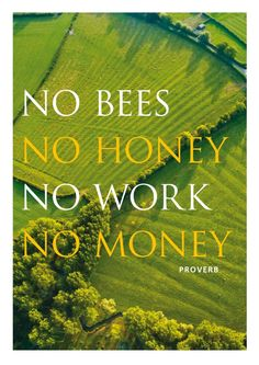No #Bees, No Honey, No Work, No Money. Dean the Beekeeper keeps bees in top bar beehives. Instead of chemicals and antibiotics to combat parasites and diseases, he employs Natural Selection.  Shipping bees in to the U.S. is a huge business. Most of them die in transit. How does this make sense? Bees are crucial to pollinating our food. Without them our crops will suffer.