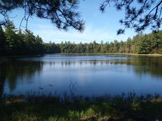 Plan your Perfect Pure Michigan Summer Fishing Trip.