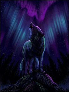 My heart is a wolf ruled by two moons one which beckons me back into the night, the other is calling me home. ~Maza-Dohta