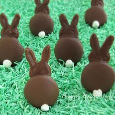 Chocolate Bunnies with Vanilla Wafers - For more, visit http://www.pinterest.com/AliceWrenn/