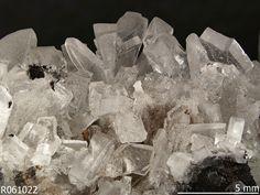 Salammoniac, NH4Cl, Schoeller mine, Kladno, Bohemia, Czech Republic. A crust of colorless tabular crystals