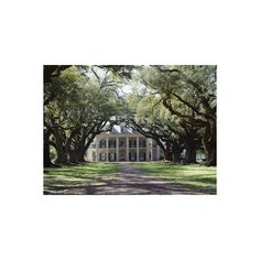 Exterior of Plantation Home, Oak Alley, New Orleans, Louisiana, USA... ($40) ❤ liked on Polyvore featuring home, home decor, wall art, new orleans wall art, photographic wall art, photography wall art and new orleans home decor