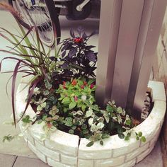 ポスト下/花壇ブロック/寄せ植え/DIY/玄関/入り口のインテリア実例 - 2014-08-30 13:34:02 | RoomClip(ルームクリップ)