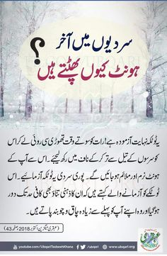 Home Health Remedies, Natural Health Remedies, Natural Health Tips, Health And Beauty Tips, Health Articles, Health Advice, Health And Wellbeing, Health And Nutrition, Hair Tips In Urdu