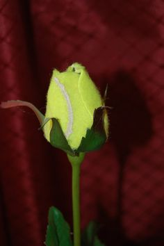 Tennis Sport Bud by SportBuds on Etsy, $10.00 I would like treasure this rose forever