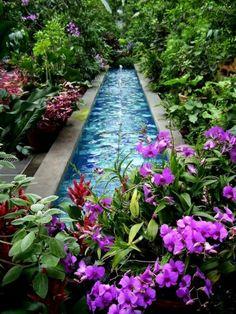 27 idéés pour le bassin de jardin préformé , hors sol + - lac-equ-frais-plante