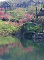 Branson scenery in the spring.