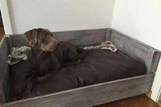 Hundebett selbst gebaut