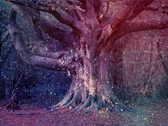 this makes me think of the ferngully tree What Dreams May Come, Fairy Tree, Spirit Science, Fairy Land, Fairy Dust, Fantasy World, Sacred Geometry, Faeries, Daydream