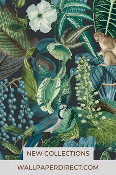 Stunning wallpaper designs feature in the new Albany Tropical collection like this beautiful Amazon rainforest pattern now available at wallpaperdirect.com Vinyl Wallpaper, Amazon Wallpaper, Teal Wallpaper, Tropical Wallpaper, Wallpaper Samples, Wallpaper Online, Blue Wallpapers, Botanical Wallpaper, Swedish Wallpaper