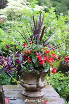 Flower Planter Idea Gallery
