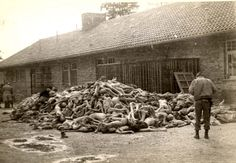 Dachau death camp, Germany, 1945, An American soldier next to a pile of corpses.