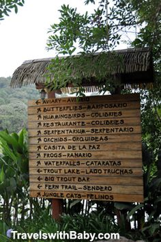 Much to see at the La Paz Waterfall Gardens in central Costa Rica before the waterfall hike