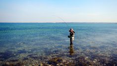 Fish on! - A fish is hooked in the clear water on the Danish coast