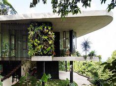 Jesse Bennett Architect | Planchonella House