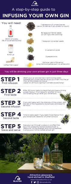 infuse-your-own-gin-infographic.png