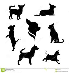 small dog vector - Google Search