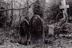 Gothic Gargoyles | Cimetière sombre