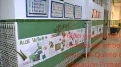 """lolylom - YouTube Proyecto Documental sobre """"Las plantas medicinales y aromáticas de nuestra Andalucía"""", realizado y con participación de todo el alumnado del Centro, desde Ed. Infantil hasta 6º de Ed. Primaria."""