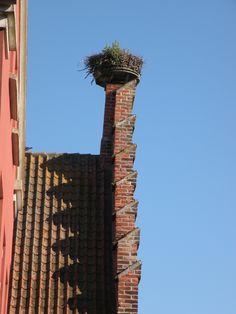 Stork's nest in Ribe, Denmark