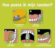Wijs leerlingen, op ene leuke manier, op het essentiële van tanden poetsen. Hiervoor bestaan er verschillende boxen met educatief materiaal.
