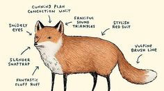 """Haven & Hearth • View topic - The Anatomy of a Fox   """"snidely eyes !"""""""