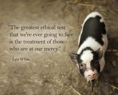 The greatest ethical test that we're ever going to face is the treatment of those who are at our mercy