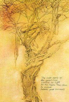 alan lee_faeries_the apple-tree-man.jpg (1090×1600)