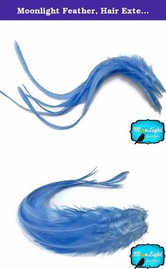 Moonlight Feather, Hair Extension Feathers; Solid Light Blue Thick Rooster Feathers; 7-11 Inches Long; 6 Pieces Per Pack. This listing is for 6 individual premium quality genetic rooster hair extension feathers. Each feathers range from 7-11 inches. Sometimes longer. They are thick feathers that have fluff on the top of the strand. These feathers are unique and breed in USA which was originally used for fly tying.No color compares to the cuteness of solid light blue. So soft and so…