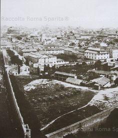 Mura Aureliane e Borghi,ripresi dal Belvedere Vaticano Anno: (?)