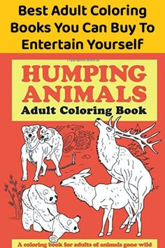 18 Best Adult Coloring Books You Can Buy To Entertain Yourself Swear Word Coloring Book, Coloring Books, Funny Animal Pictures, Funny Animals, Awkward Family Photos, Funny Memes, Hilarious, Life Memes, Book Activities