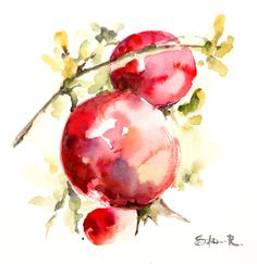 Red Pomegranates on a Branch Painting Original #Watercolor Painting Modern #Watercolour Art  One of a Kind Watercolour Art  Scale: 8.25''x9.5'' (21x24.5 cm) Medium: top brand... #art #trending #sale #clearance #etsy #pomegranate #watercolor #watercolour #painting #aquarelle