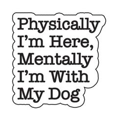 Physically I'm here, mentally I'm with my dog.