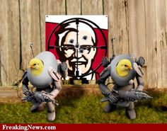 funny chicken pictures | Funny Kfc Pictures - Strange Pics - Freaking News
