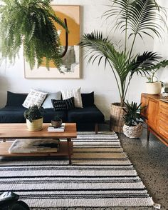 Striped rug, black couch, lots of plants