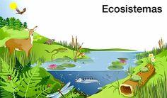 Características y generalidades de un ecosistema Lake Animals, Biology Lessons, Biology Teacher, Barbie, Gorillaz, Ecology, Aquarium, Pikachu, Animation