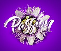 35 Remarkable Lettering and Typography Designs for Inspiration - 18