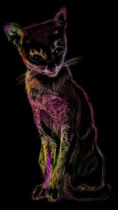 Cat on Black by ~kendrin on deviantART