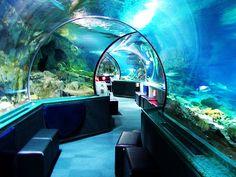Underwater World, Guam 4/1/2012
