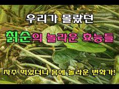 Medicinal Plants, Diy And Crafts, Medicine, Vegetables, Health, Food, Health Care, Essen, Vegetable Recipes